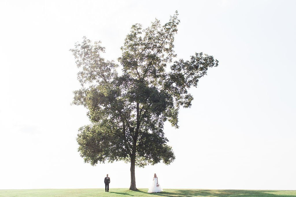 bride and groom walking under a large tree at the longue vue club