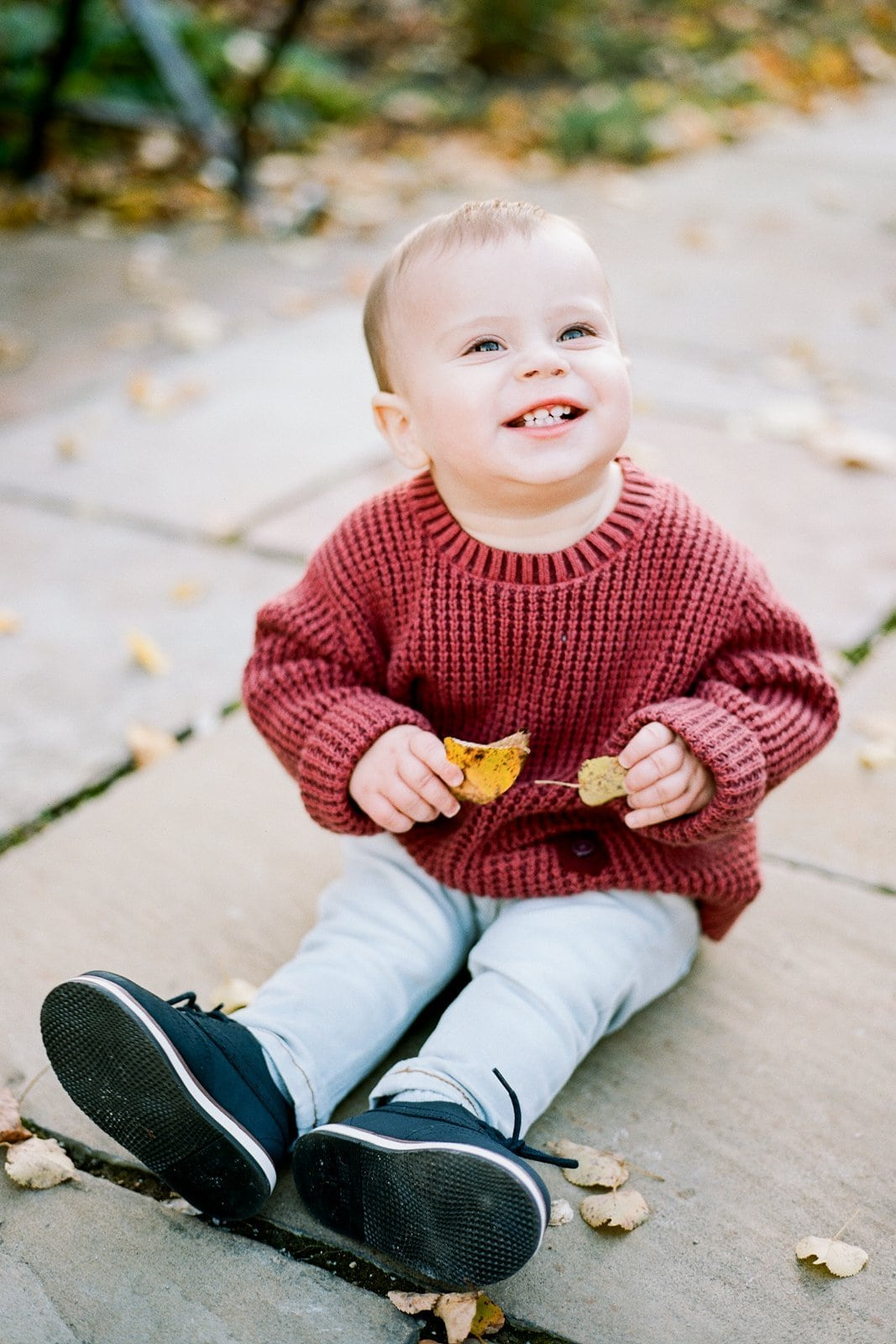 little boy sitting on the ground during fall family portraits