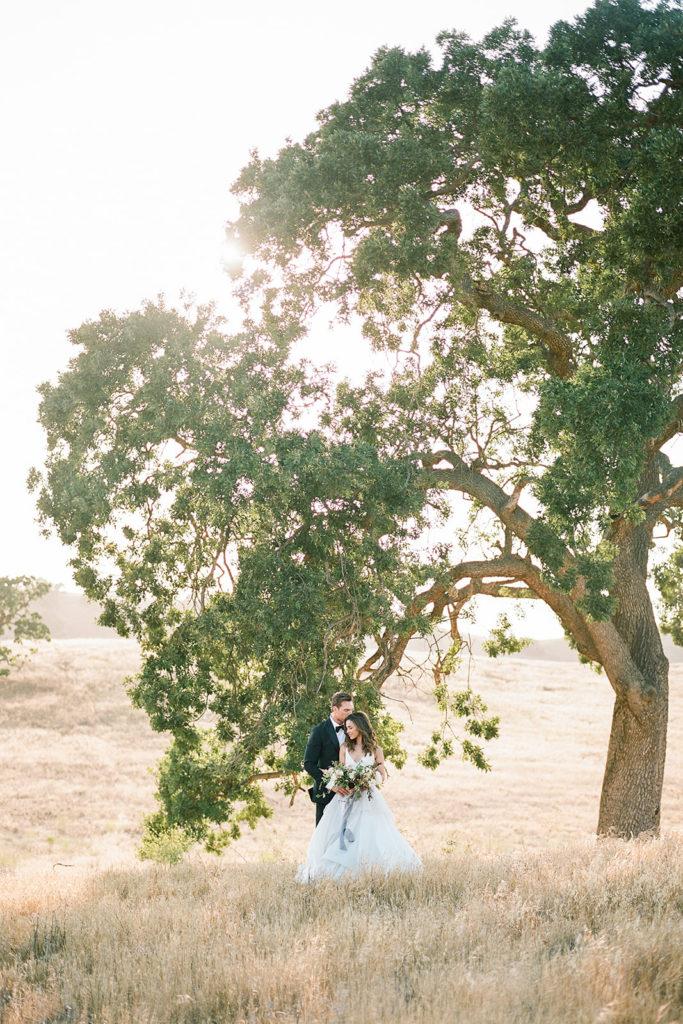 Bride and groom under a large oak tree at Kestrel Park